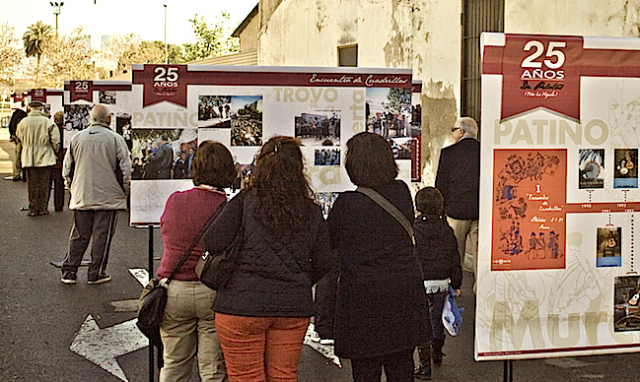 Exposicion Pelotas
