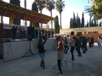 cuadrilla albatalía blog